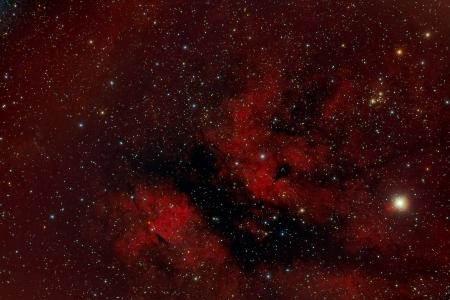 Nebulosa a Gamma Cygni