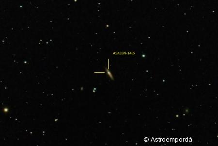 Supernova ASASSN-14lp a NGC4666