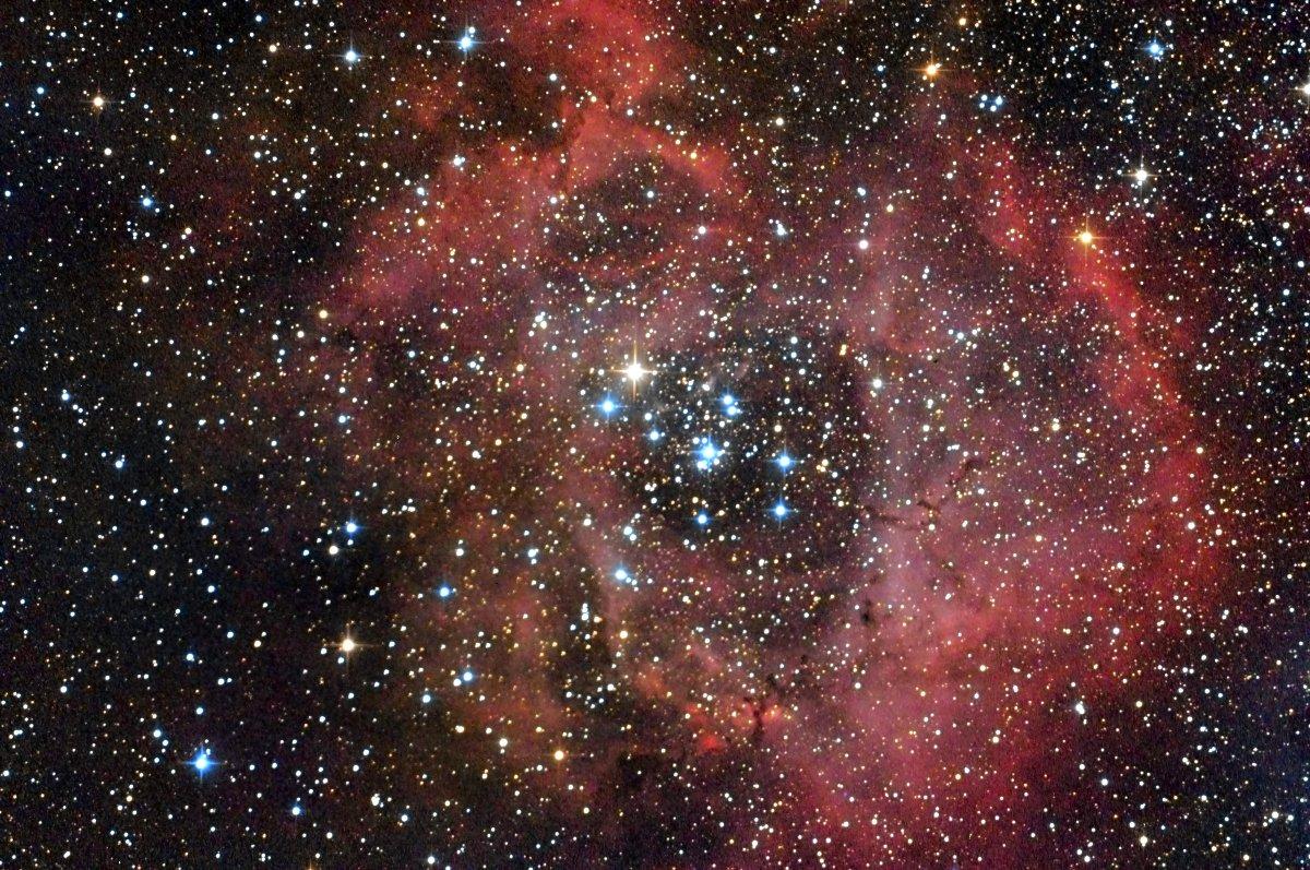 Nebulosa Roseta NGC 2244