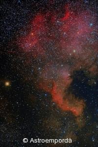 NGC7000 - Nebulosa de nordamèrica