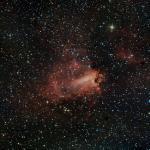 M 17 - Nebulosa Omega