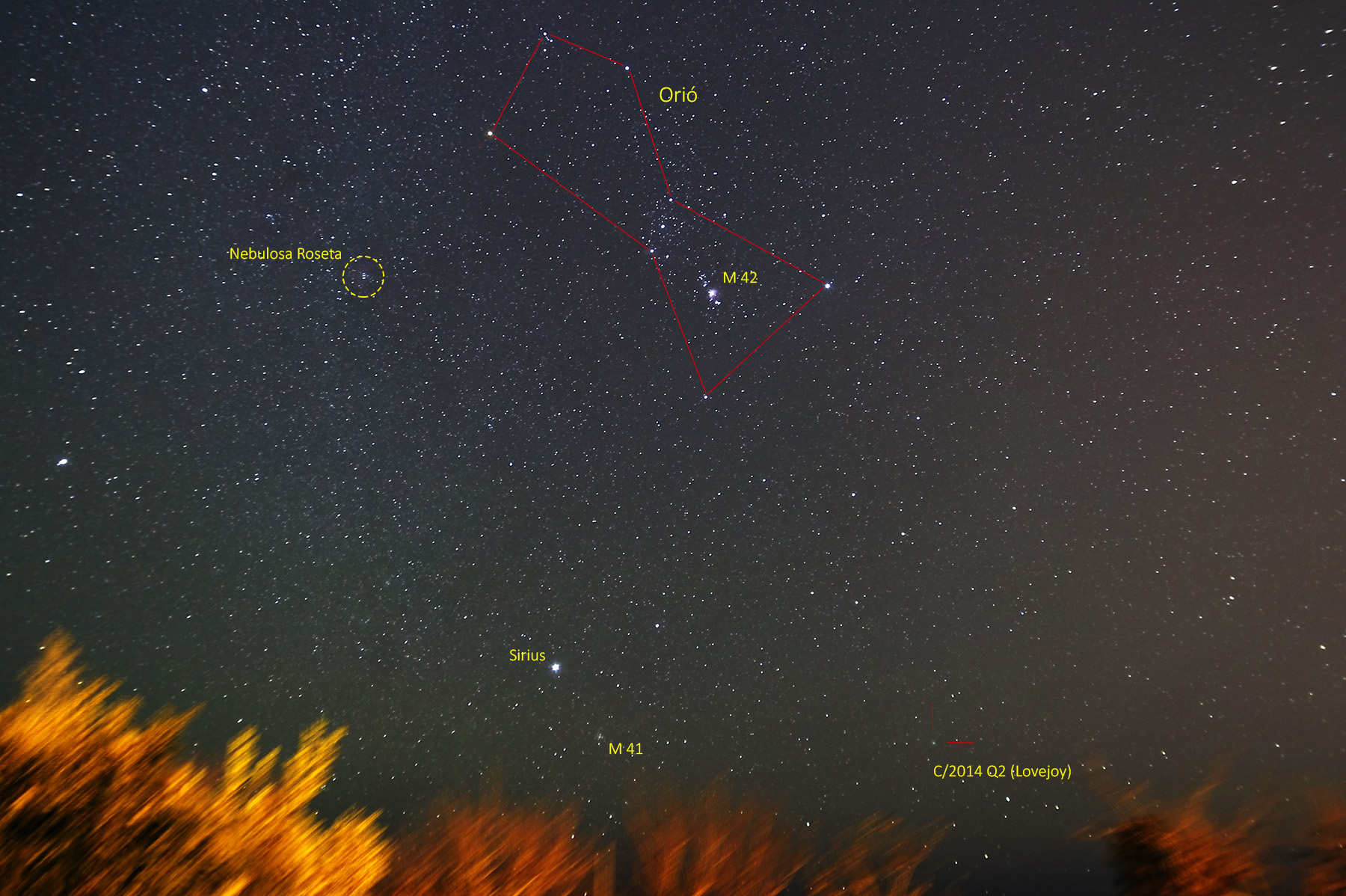Gran camp d\'Orió i cometa C/2014 Q2 Lovejoy