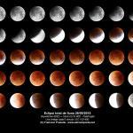 Muntatge de tot l\'eclipsi de lluna, una foto cada 5 minuts