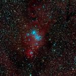 Nebulosa del Con i cúmul de l'arbre de Nadal NGC 2264